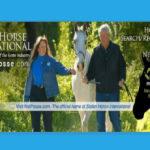 NetPosse.com - Stolen Horse International