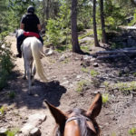 Rocky Mountain Trails and Trials!