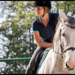 Does Your Horse Respect You? Part 4 in a Series