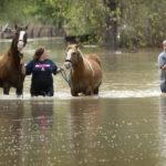Disaster Emergency Preparedness Part Two