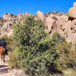 The Cochise Stronghold Trail