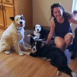 Critter Sitter Solutions... Trusted Housesitters