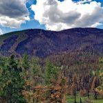Comanche Peak Wilderness... & Wildfire Damage