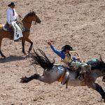 The Amazing Cheyenne Frontier Days